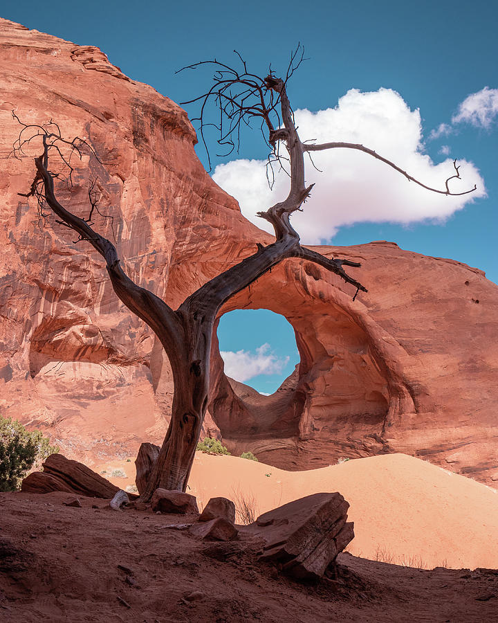 Monument Valley III, Ear of the Wind by Dalibor Hanzal