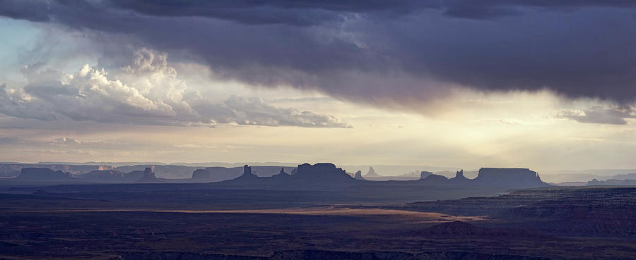 Monument Valley Vista by Leda Robertson