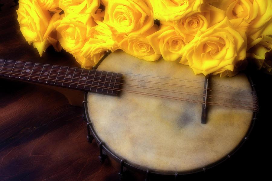 American Photograph - Moody Banjo And Yellow Roses by Garry Gay