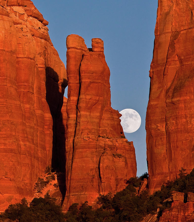 Moon In The Cathedral Photograph by Norm Cooper