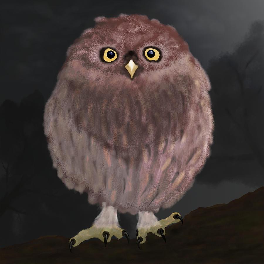 Owl Digital Art - Moon Lit Baby Owl by Chris Hall