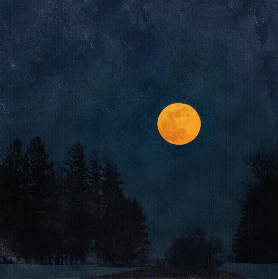 Moon Over Heron Lake by Caroline Jensen