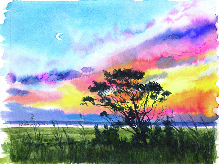 Moon Reacher by Patricia Allingham Carlson
