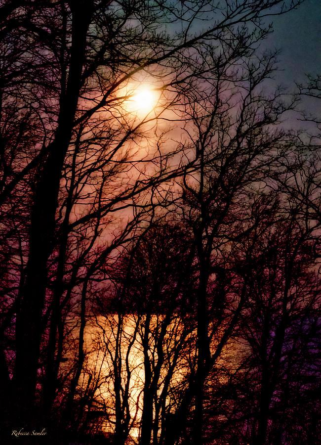 Moon Setting on Winter by Rebecca Samler