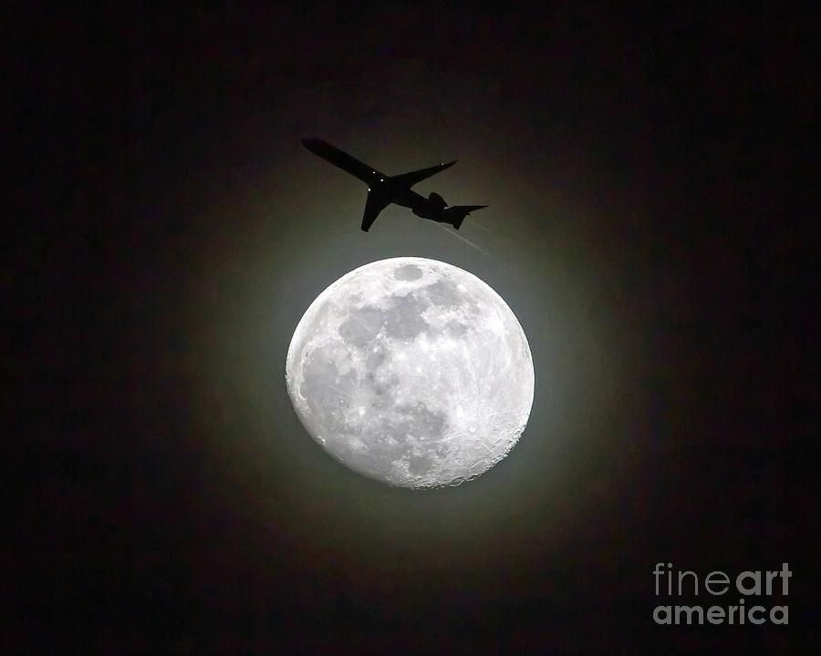 Moon Shadow by Kevin McCarthy