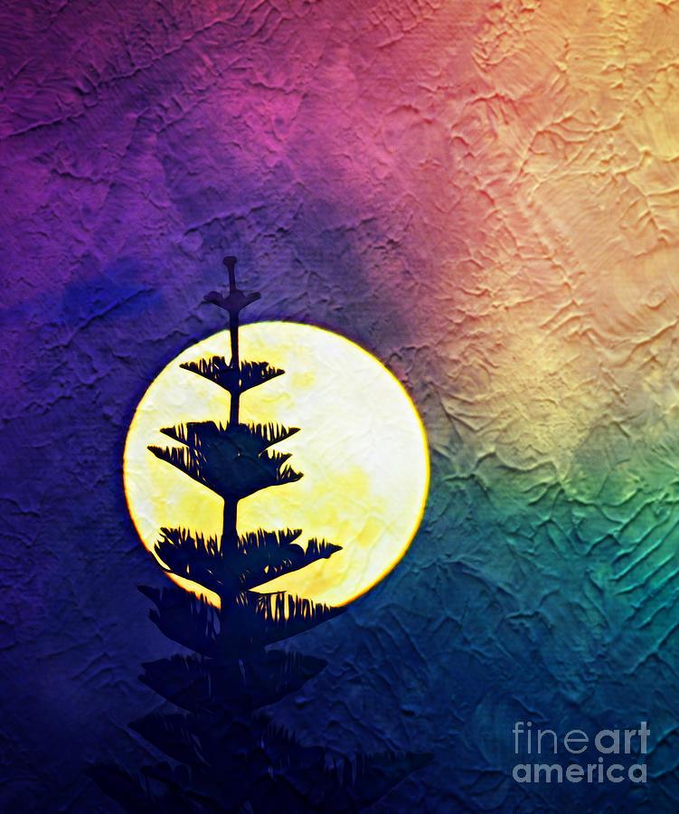 Moonlight Sonata. by Trudee Hunter