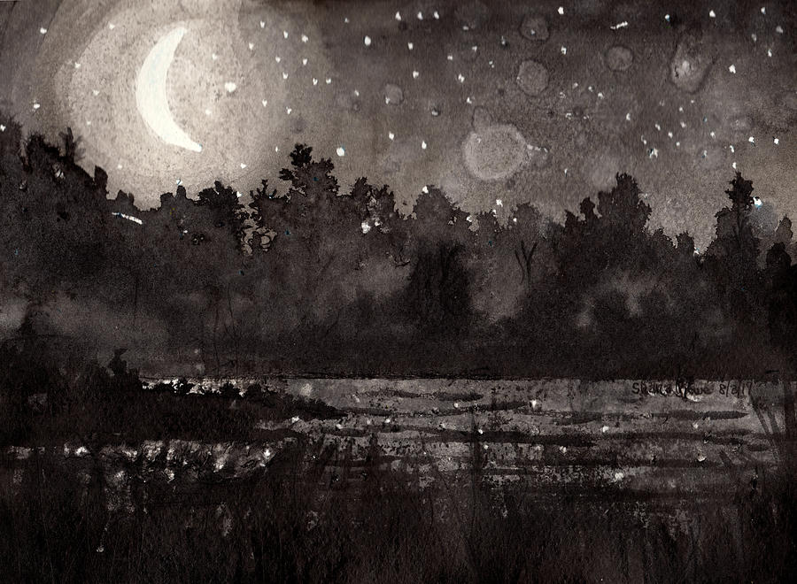 Moonlit Night by Shana Rowe Jackson