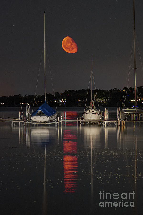 Moonrise at the Dock by Jackie Johnson