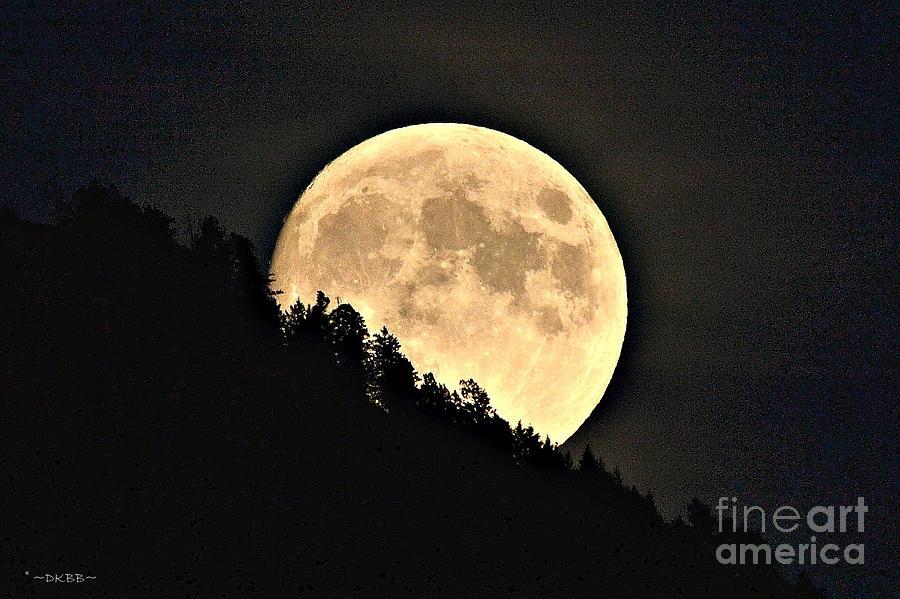 Moonrise by Dorrene BrownButterfield