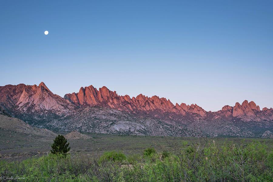 Organ Mountains by Jody Partin