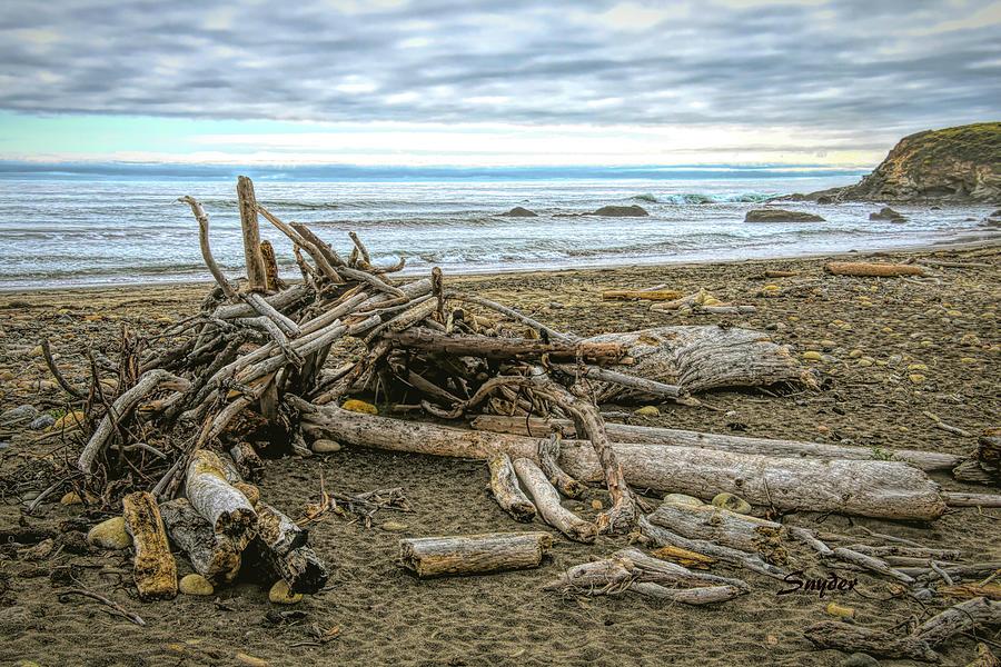 Moonstone Beach Driftwood Beach House 2 by Floyd Snyder