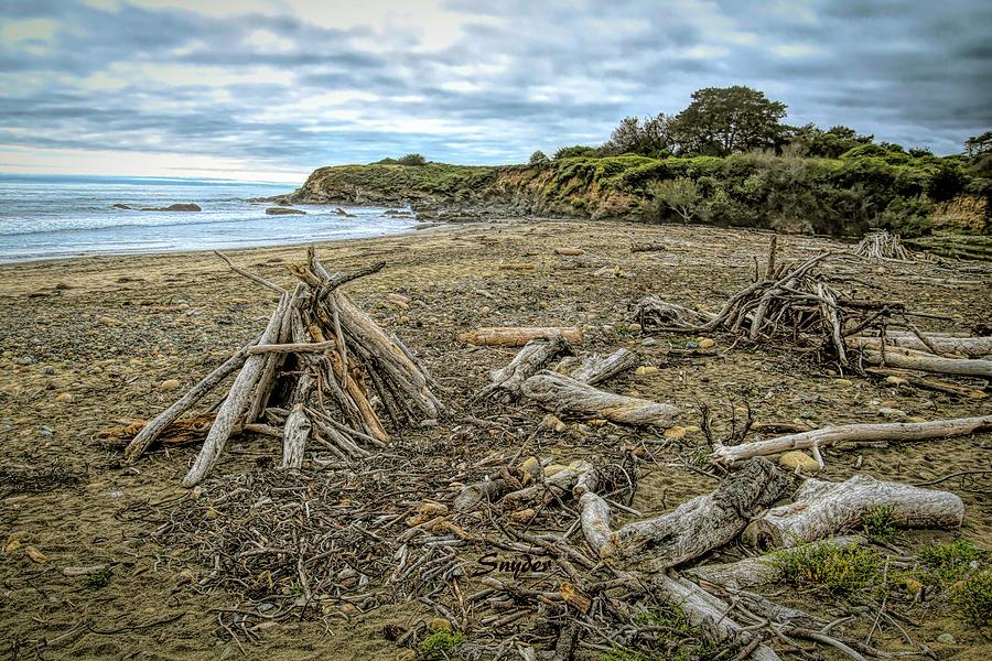 Moonstone Beach Driftwood Beach House 3 by Floyd Snyder