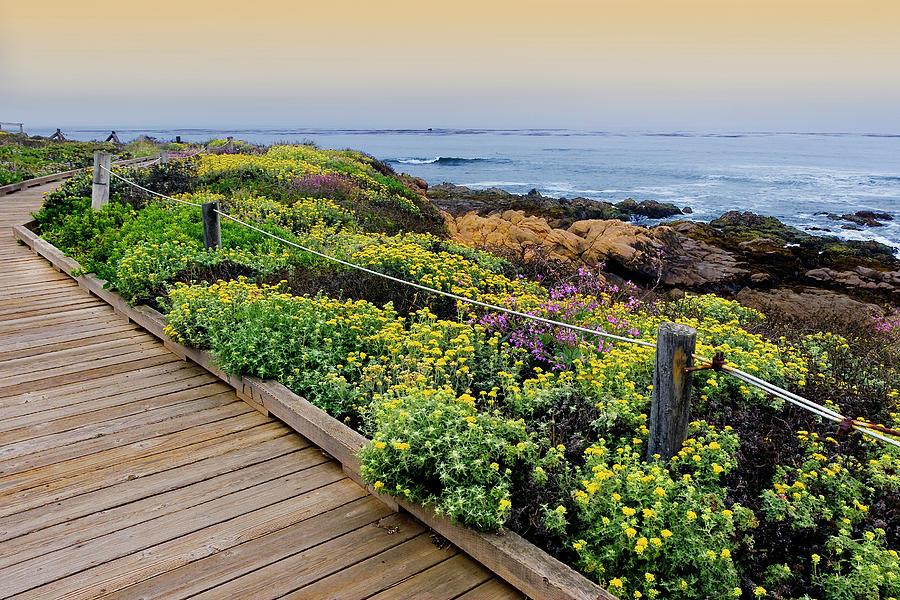 Moonstone Boardwalk Photograph by Stephanie Sawyer