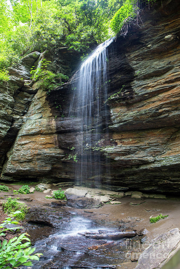 Moore Cove Falls in North Carolina 1  by Kevin McCarthy