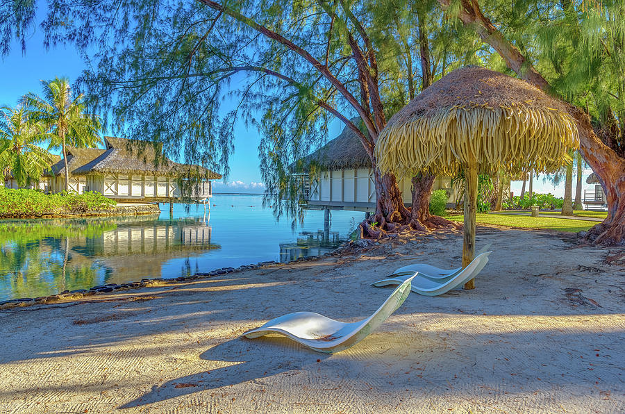 Adventure Photograph - Moorea French Polynesia Morning Scene by Scott McGuire
