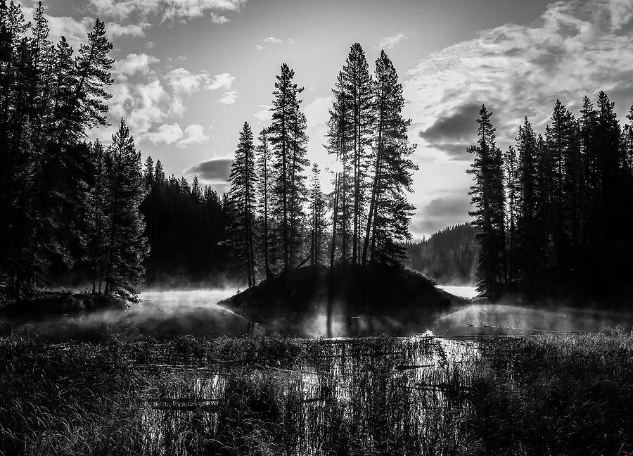 Moose Lake Jasper National Park by Dan Sproul