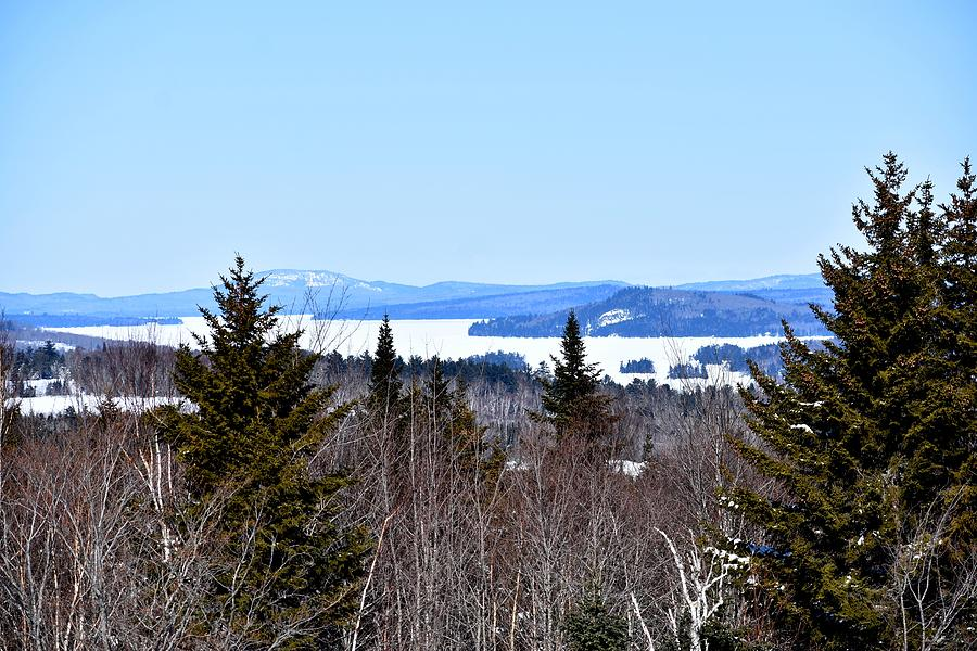 Moosehead Lake Beyond the Evergreens by Nina Kindred