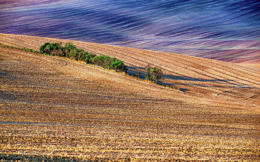 Moravia Photograph - Moravia in the morning by Andrei Dima