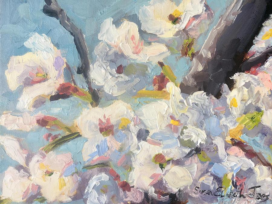 More Cherry Blossoms by Susan Elizabeth Jones
