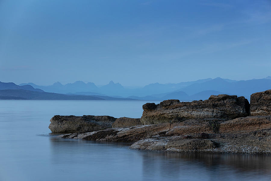 More Madrona Blues by Randy Hall