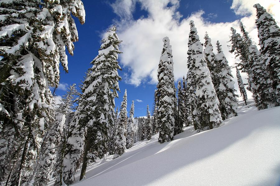Mores Creek Summit Record Snow Fall by Ed  Riche