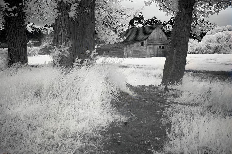 Black And White Photograph - Mormon Row Barn by Jon Glaser