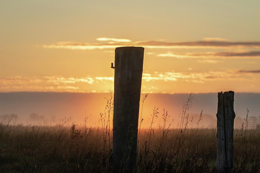 Morning Arrives At Buena Vista Prairie 2019 by Thomas Young