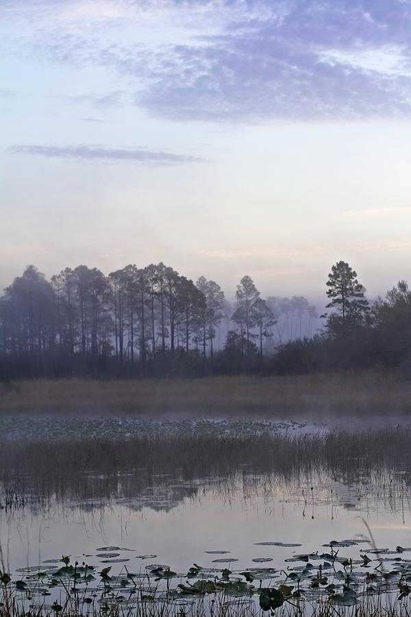 Morning at Hopkins Prairie Pond by Paul Rebmann
