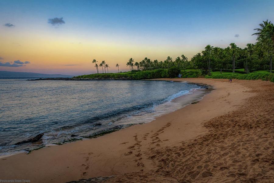 Morning Beach Light by Gaylon Yancy