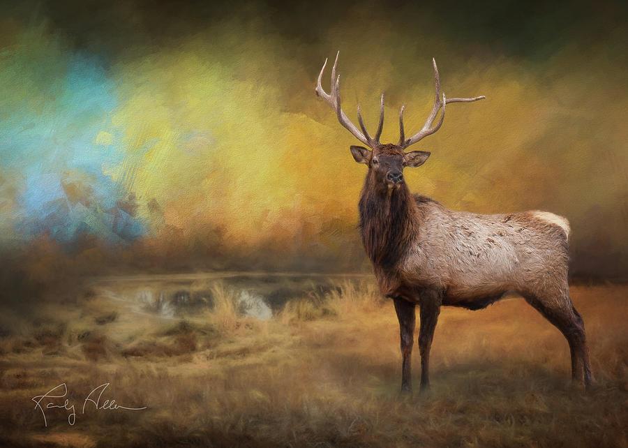Morning Bugler by Randall Allen