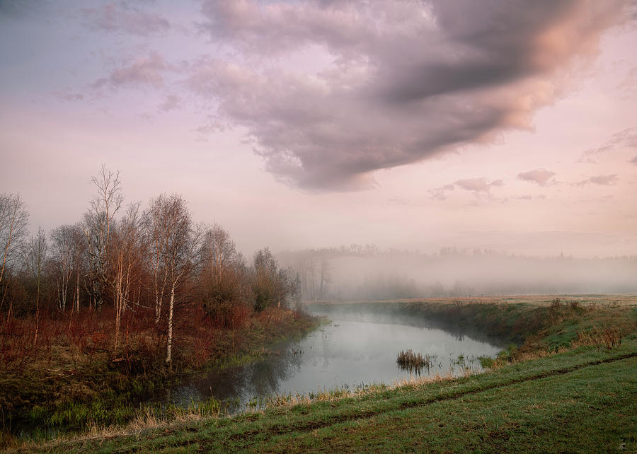 Morning By the Oxbow by Dan Jurak