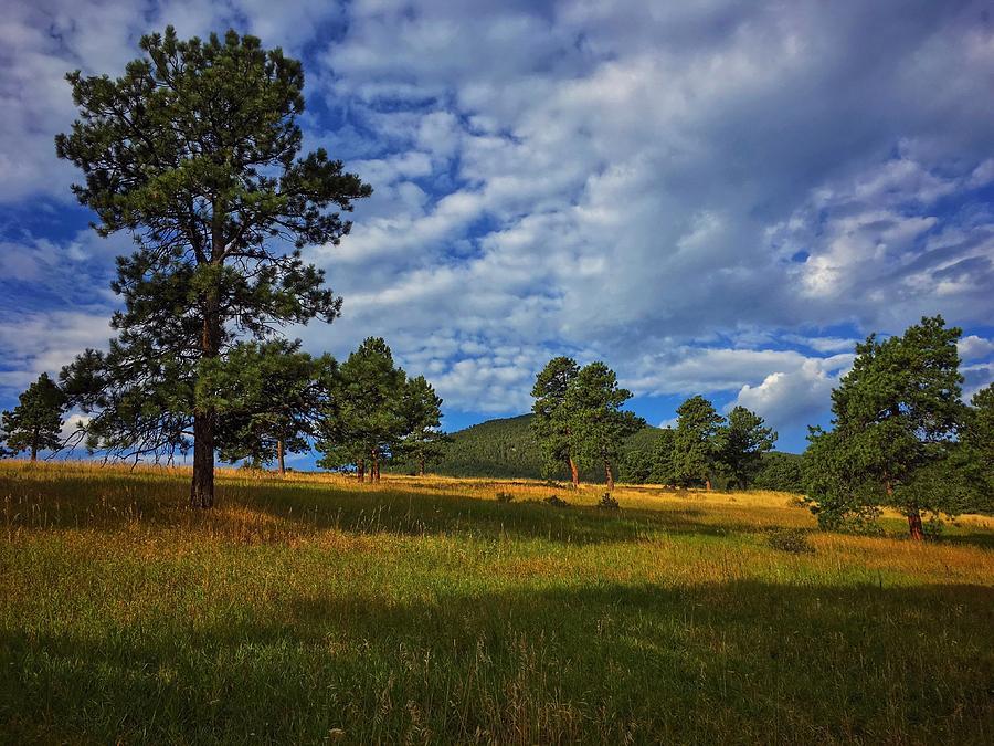 Morning Clouds by Dan Miller