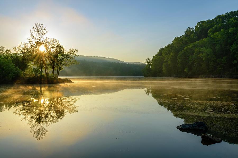 Morning Dreams by Michael Scott