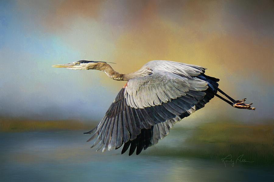 Morning Flight by Randall Allen