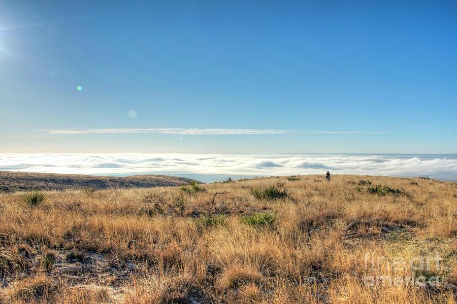 Morning Photograph - Morning Fog by Joe Sparks