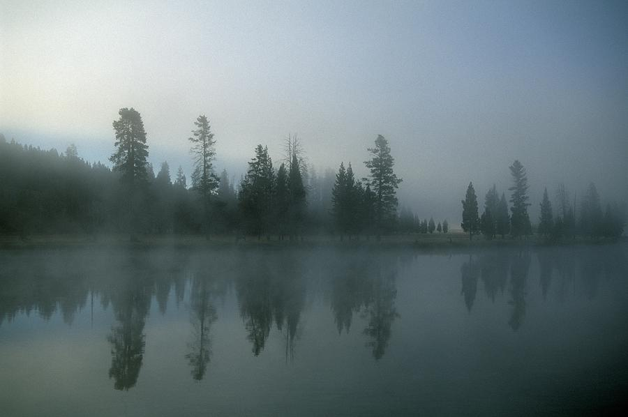 Morning Fog Over Yellowstone River Photograph by Design Pics/natural Selection Robert Cable