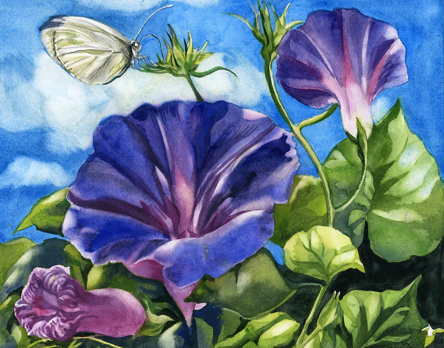 morning glory with butterfly by Alfred Ng