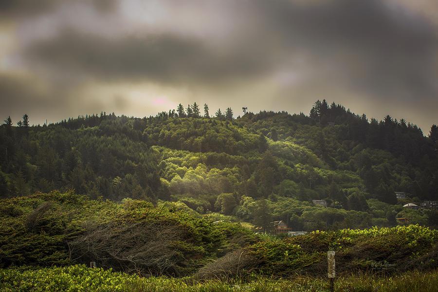 morning hills by Bill Posner
