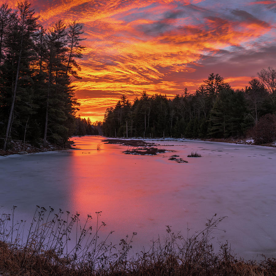Morning in December by MIKE MCQUADE