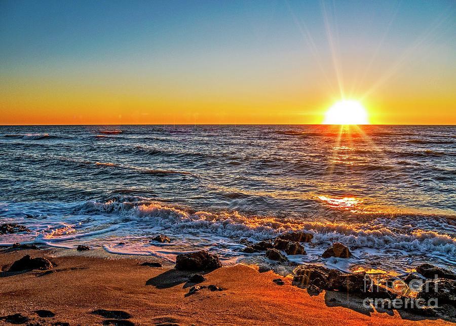 Morning in Malibu  by EliteBrands Co
