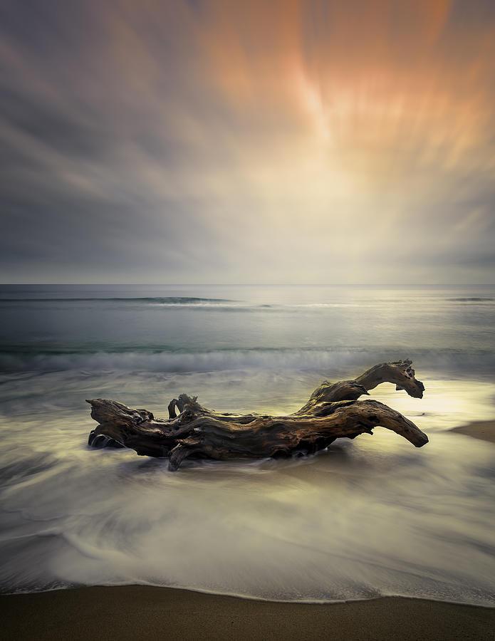 Sunrise Photograph - Morning Light by Albena Markova