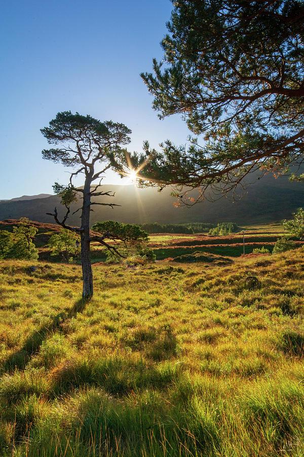 Loch Photograph - Morning Light by Smart Aviation