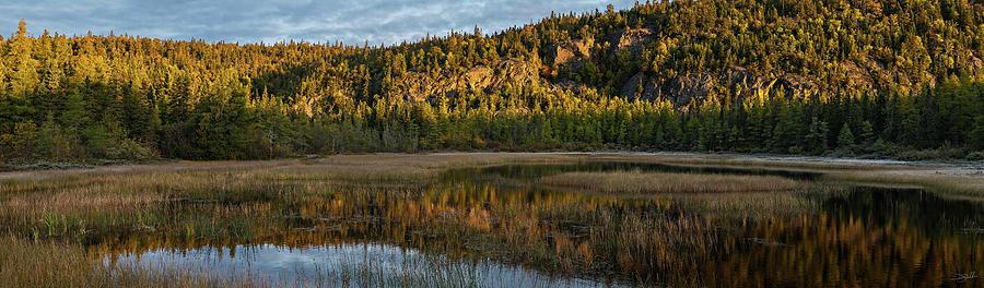 Morning Marsh by Doug Gibbons