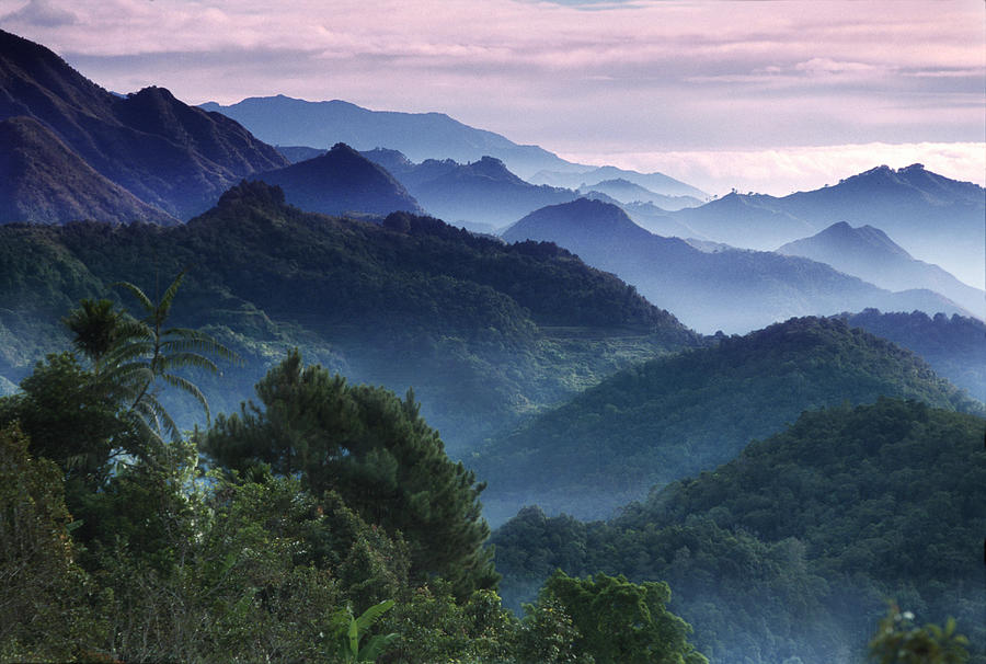 Morning Mist In The Cordilleras Photograph by Per-andre Hoffmann / Look-foto