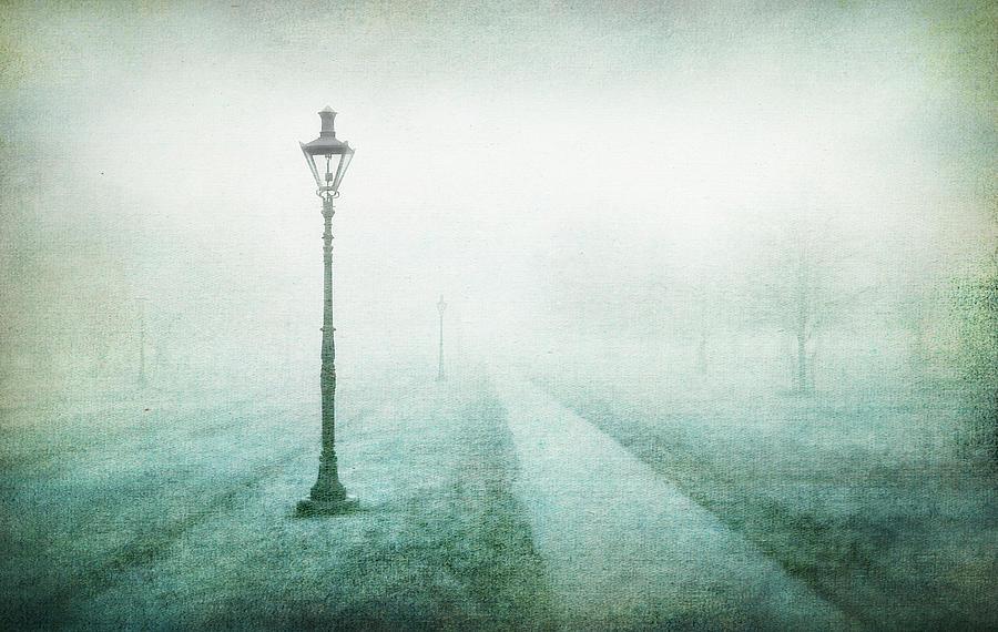 Texture Digital Art - Morning Mist on Path by Terry Davis