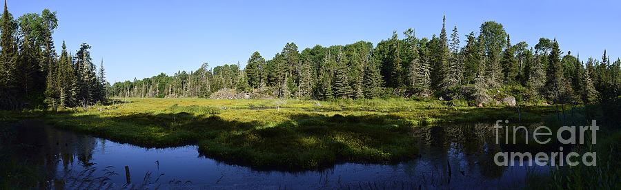 Morning on the Bog Panorama by Larry Ricker