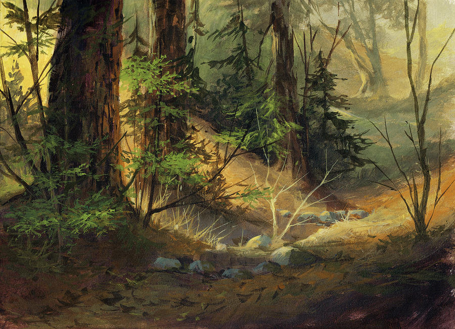 Morning Redwoods by Michael Humphries