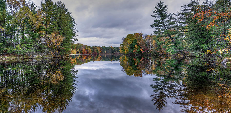 Morning Reflections by Brad Bellisle