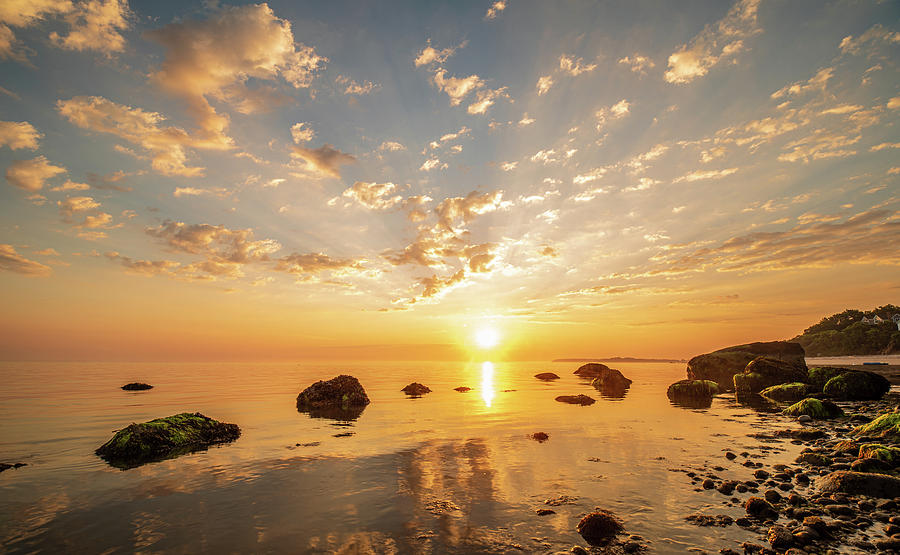 Morning Reflections by Samantha Kennedy