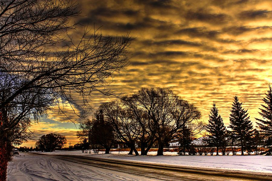 Morning snow by David Matthews